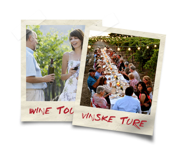 WINE EVENT - Vinske Ture