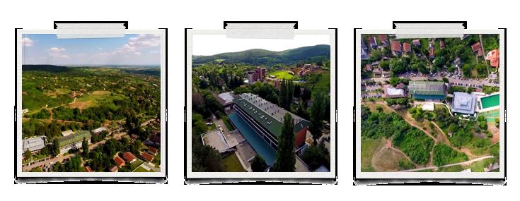 Vrdnik - fotografija Davorin Majhenšek