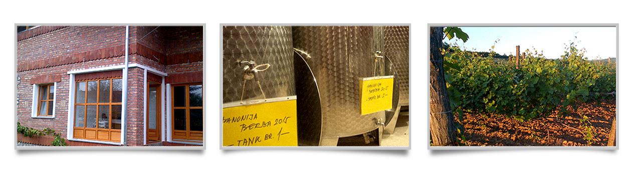 Vinarija Čaša vina i priča - vinogradi i vinarija