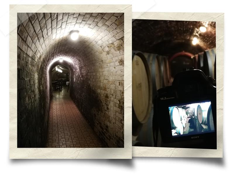 Vinski podrum vinarije Polgar, Vilanj