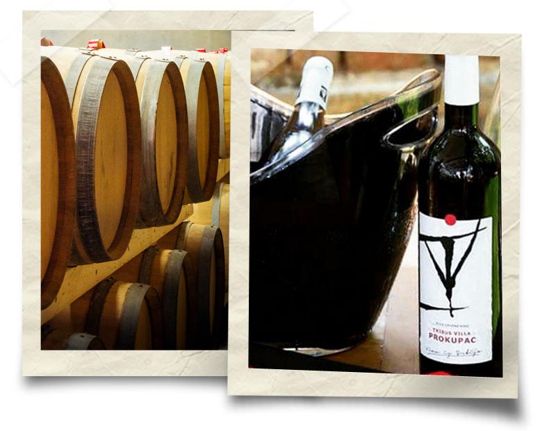 Toplički vinogradi - Prokupac