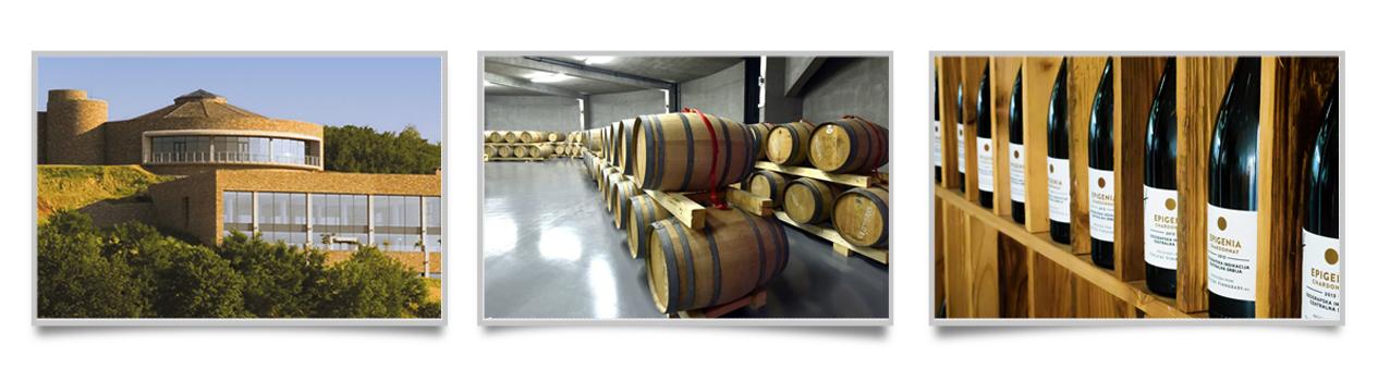 Vinarija Toplički vinogradi